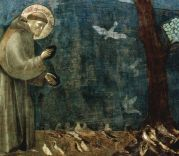 St-Francis-of-Assisi-Preaching-to-the-Birds-Giotto